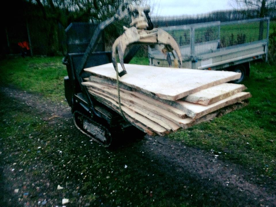 Boomstam planken