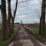 bomen kappen Herwijnen