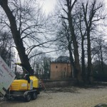 bomen snoeien landgoed zoelen 2