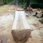 boomstam planken 4