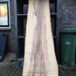 boomstam planken 5